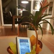 Les nouveaux voisins de Catherine McKenzie (éditions Michel Lafon)