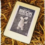 Silver water de Haylen BECK (éditions Harper Collins Noir)