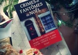 Crimes et fantômes de Noël : 12 nouvelles angoissantes (éditions l'Archipel)