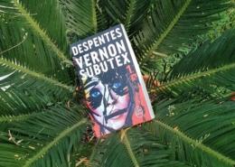 Vernon Subutex de Virginie Despentes (éditions Le livre de poche)