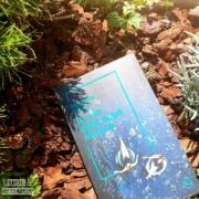 La vie dont nous rêvions de Michelle Sacks (éditions Belfond)
