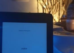 Julien, nouvelle de Mathieu Menegaux