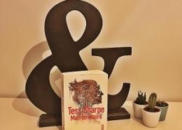 Mon territoire de Tess Sharpe (éditions Sonatine)