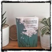 Et toujours les forêts de Sandrine Collette (éditions JC Lattès)