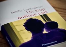 Un loup quelque part d'Amélie Cordonnier (éditions Flammarion)