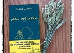 Les volontés de Cécile Guidot (éditions JC Lattès)